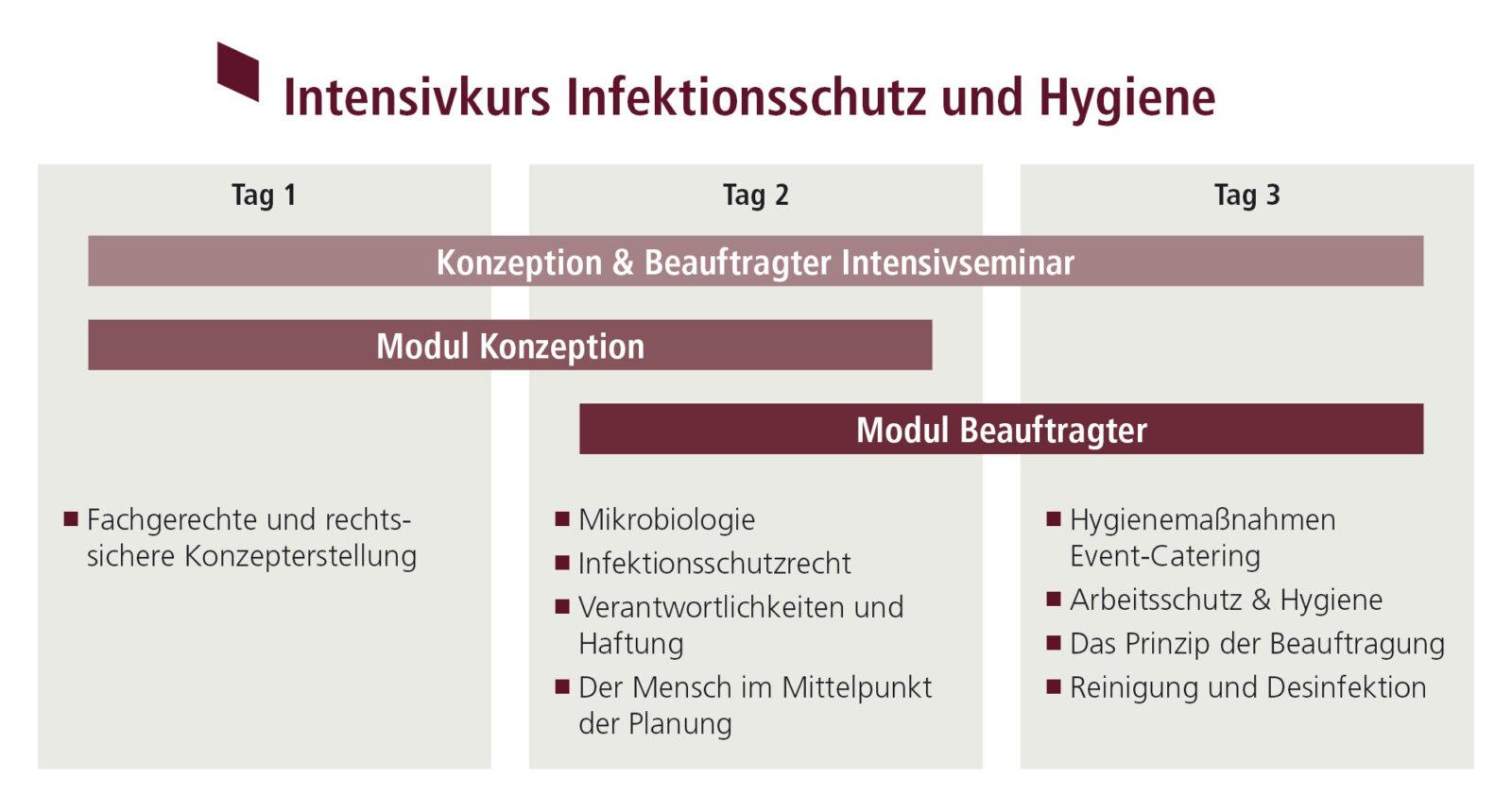 Ein Schaubild der zwei Module des Intensivseminars zu Infektionsschutz und Hygiene